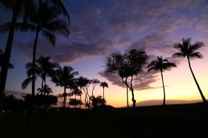 Hawaii Drug Rehab